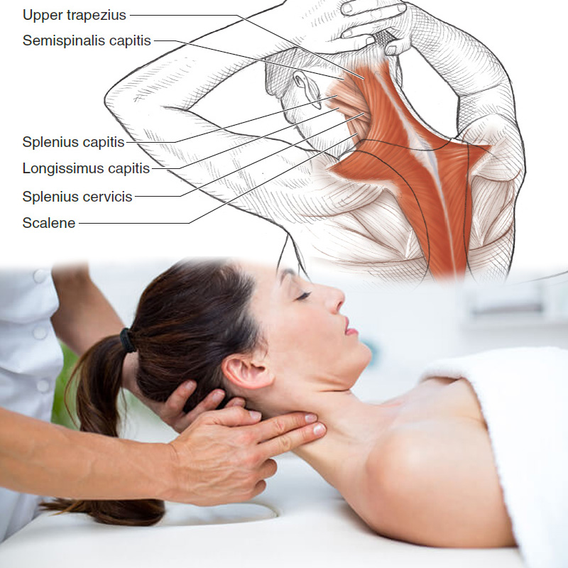 Le massage 4D/4S Mecha