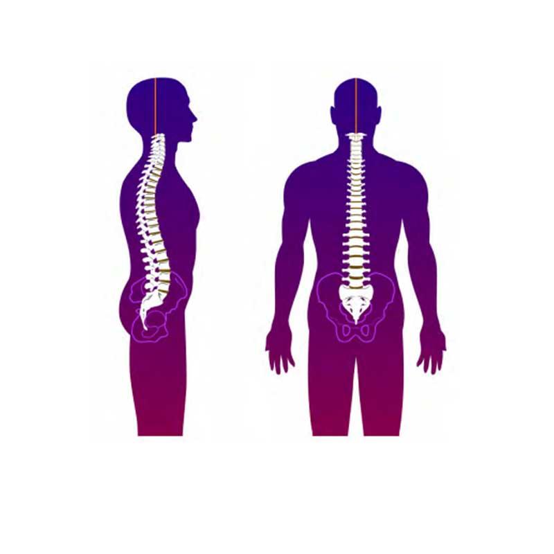 Scan et analyse corporelle